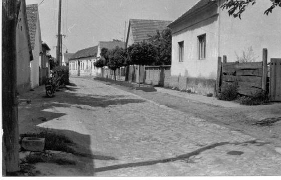 adyu1978